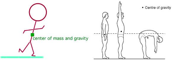 Understanding center of mass in humans
