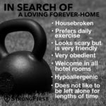 Consider adopting a new foreverfriend today wwwstrongfirstcom kettlebell kettlebells StrongFirst