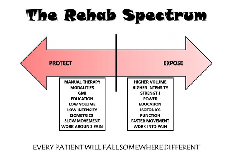 Rehab-Spectrum-David-Cho