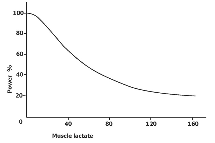 Correlation between lactate concentration and power
